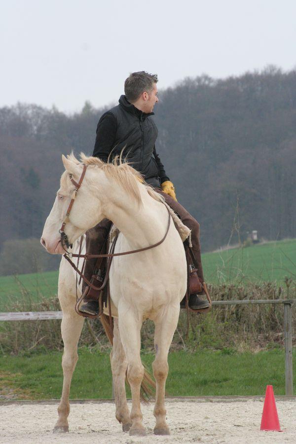 Reiter auf weißem Pferd